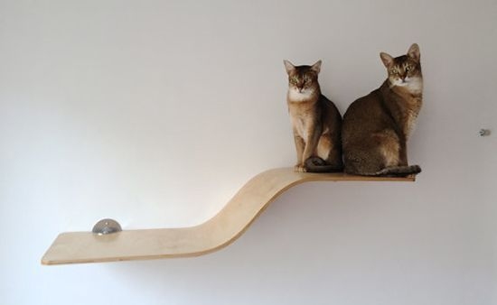 241 best cat shelves condos trees perches images on for Chaise lounge cat scratcher