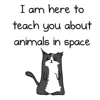 Here to teach you about animals in space - The Oatmeal What makes this true gold is the intro by 'Cecil' from NightVale!