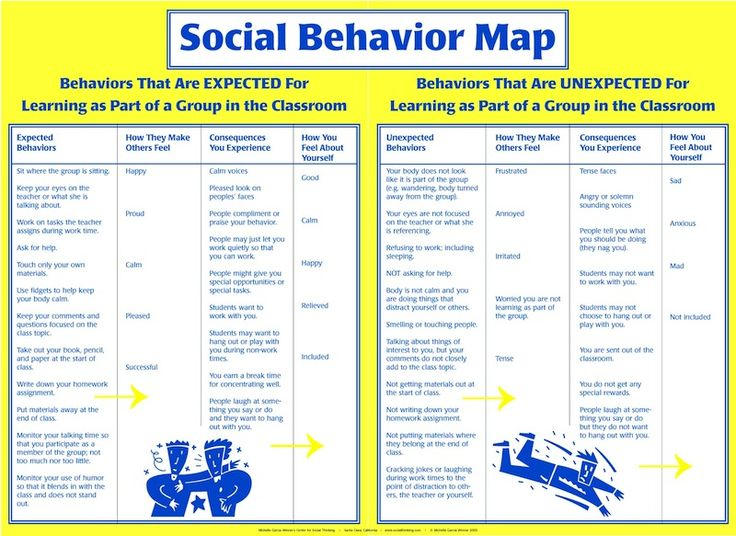 Image result for social behavior mapping