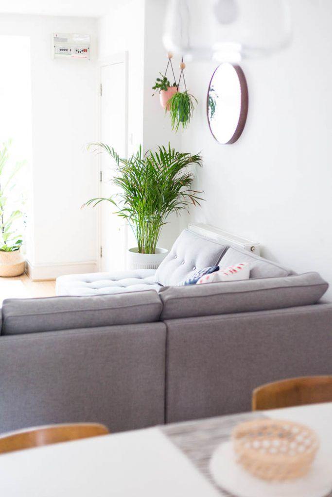 16 besten Pflanzen Bilder auf Pinterest Pflanzen, Dschungel und - moderne wohnzimmer pflanzen