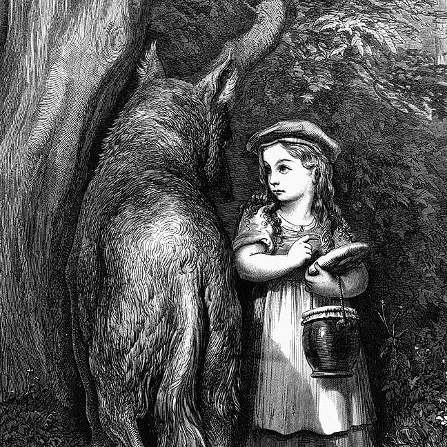 Explore the history and evolution of gender codes in the Little Red Riding Hood fairy tale from the original folktale to Charles Perrault and the Brothers Grimm, to Angela Carter's subversive feminist retellings. #redridinghood #feminist #history #evolution #academicpaper