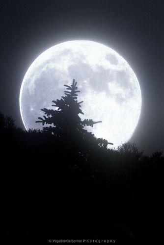 x moon7