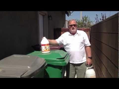 how to clean sloppy dog poop off carpet
