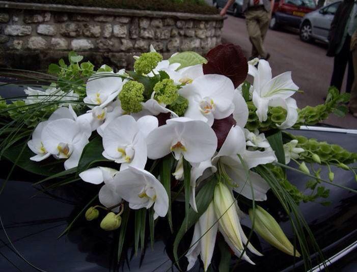 Nos fleurs sauront embellir vos décorations intérieurs et extérieurs. #delyfleurs #instagood