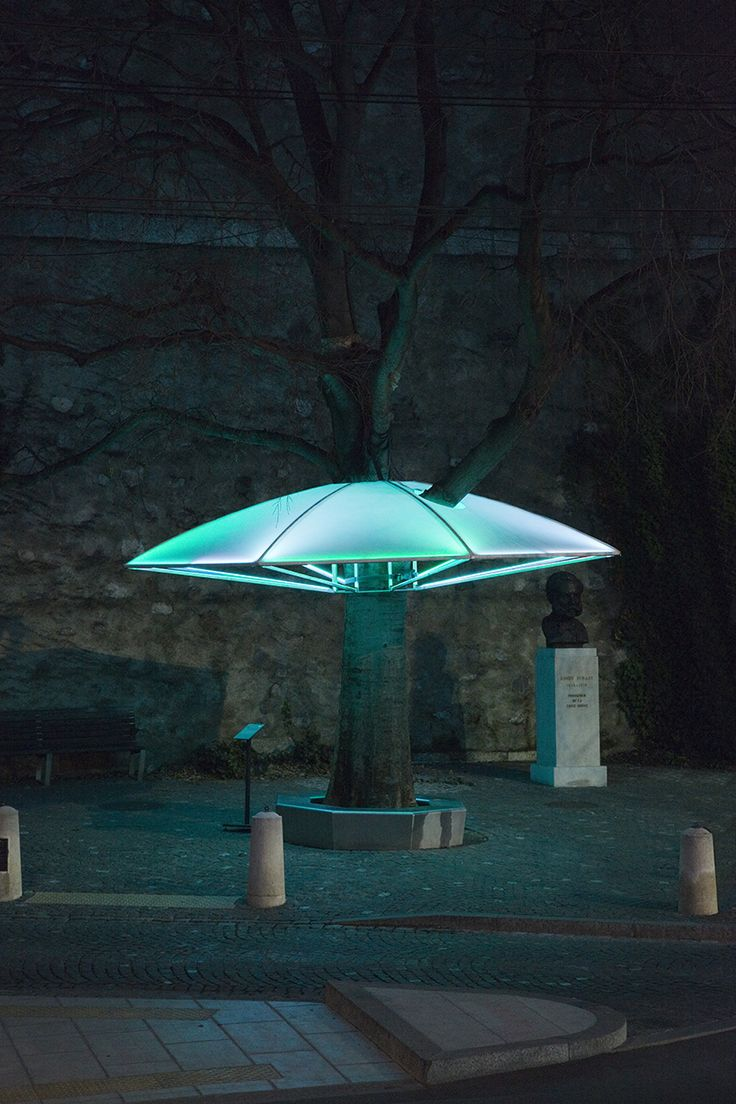 sheltree - an illuminated umbrella-like canopy for a tree by allegory