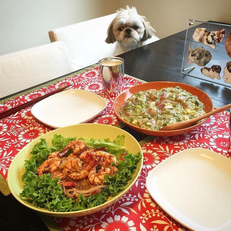 今夜の貴族の晩餐はGWで久しぶりに故郷のハワイが懐かしく思ったのでガーリックシュリンプと鮪とアボカドとメカブのポキをヤラカシたよ( ) ではでは( ω)( ω)かんぱーい  #貴族の晩餐 #シーズー #愛犬まゆげ #ハワイ by mayuge0807