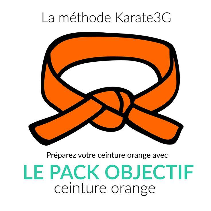 Accédez à tous les cours en vidéo nécessaires à votre progression en karaté ! Et obtenez ainsi facilement votre ceinture orange !