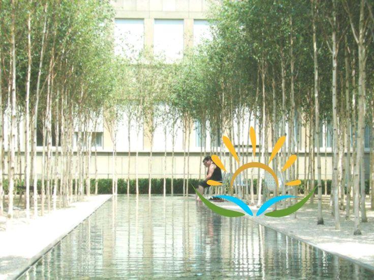 Pwp Landscape Architecture Novartis Headquarters Forum 1 Courtyard Landscape And Urbanism Architecture Landscape And Urbanism Architecture