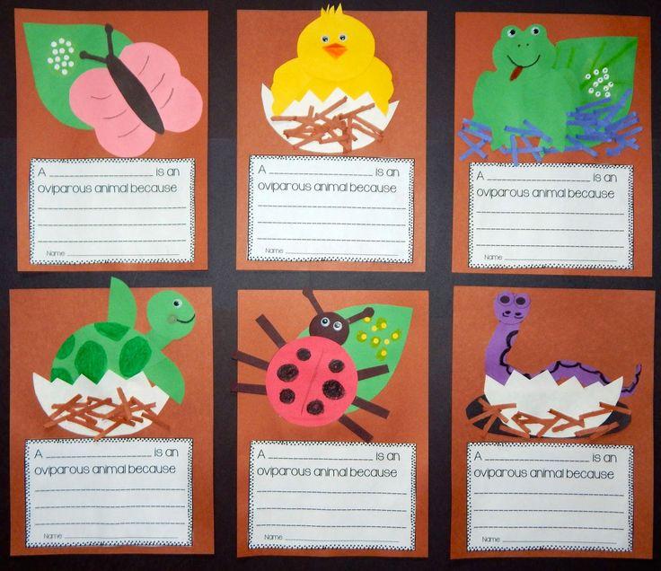 Oviparous Animal Crafts and Writing Display!