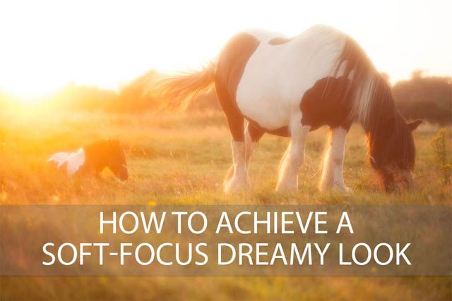 How to achieve a soft-focus dreamy look