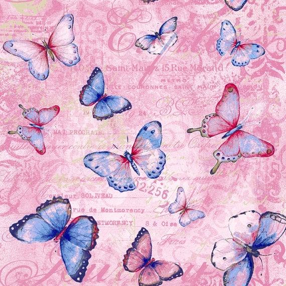 Pink Butterfly Wallpaper: 25+ Best Ideas About Butterfly Background On Pinterest