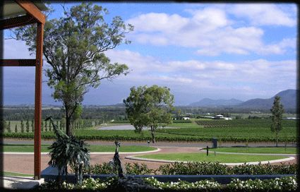 Hunter Valley Views