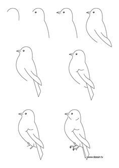 How to draw a bird, step-by-step. (Click to enlarge, then shrink-to-fit 85% to fit on one page.) (art, kids, drawing lesson)