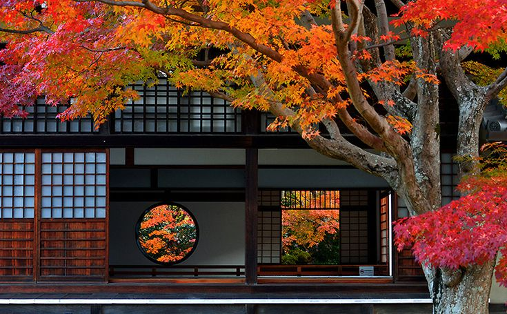迷いの窓(無明)と 悟りの窓(無無明) の源光庵の紅葉です。 この写真は2014年に特別公開された時のものです。 掲載もご住職のご了解済です。 さて今年...
