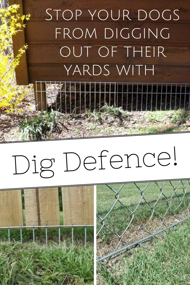 Keep your dogs safe. Keep your sanity. Keep them in their yards with the easy to install, super effective and humane Dig Defence inground fencing solution.