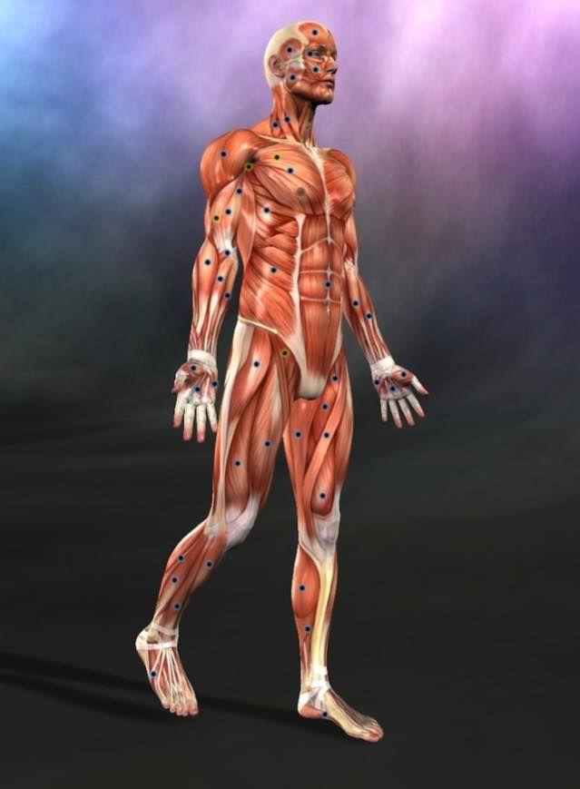 På kroppen sidder der en masse triggerpunkter som ...