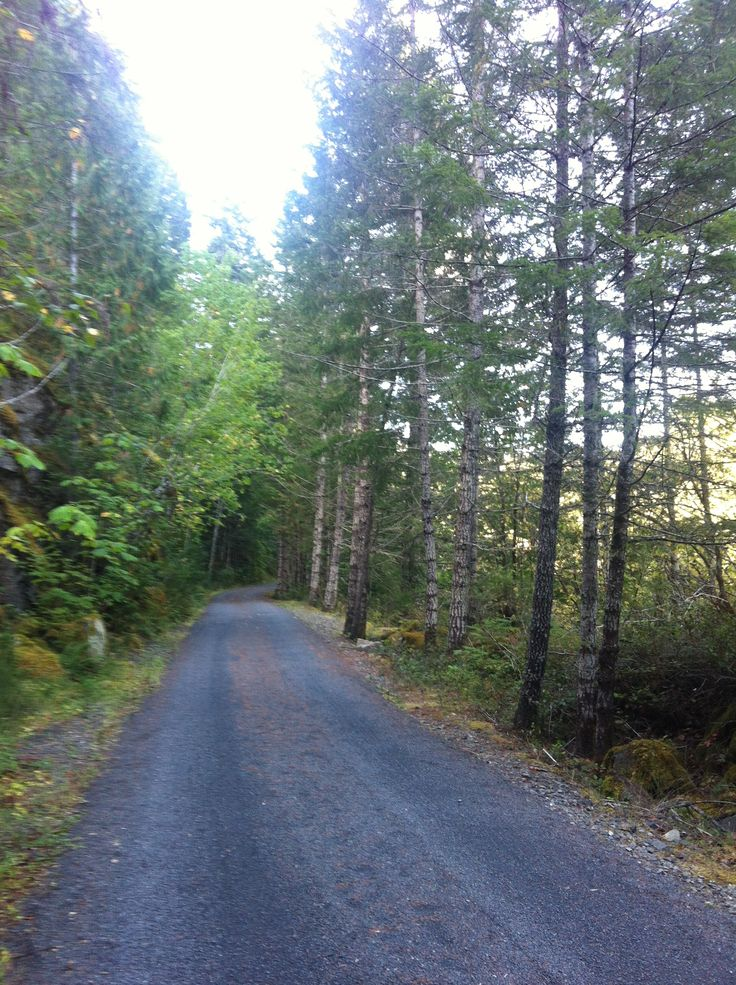 Hiking Trails In The Sooke Hills On Vancouver Island