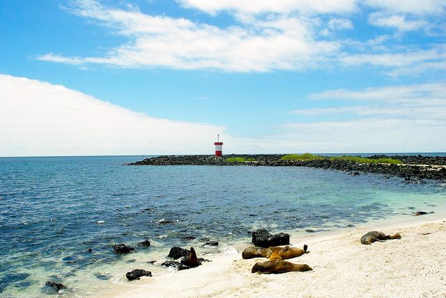 Independent Travel in the Galapagos Islands
