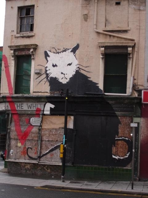 Tall cat is watching you     street art by Banksy, Liverpool   photo by Joseph Tame: Streetart Urban, Artists Endeavor, Cat Street Graff, Banksy Liverpool, Art Streetart, Art Street Banski, Street Art, Banksy Rats, Banksy Artworks