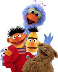 Deze Sesamstraat karakters boekt u via http://www.looppoppen.nl/sesamstraat.html