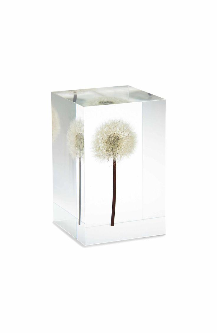Main Image - MoMA Design Store Dandelion Objet d'Art