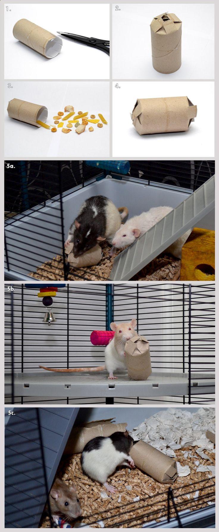 Cats Toys Ideas - Rat toy tutorial - Treat Box (Pinata) (by LadyTara on deviantART) #rats #tutorial - Ideal toys for small cats