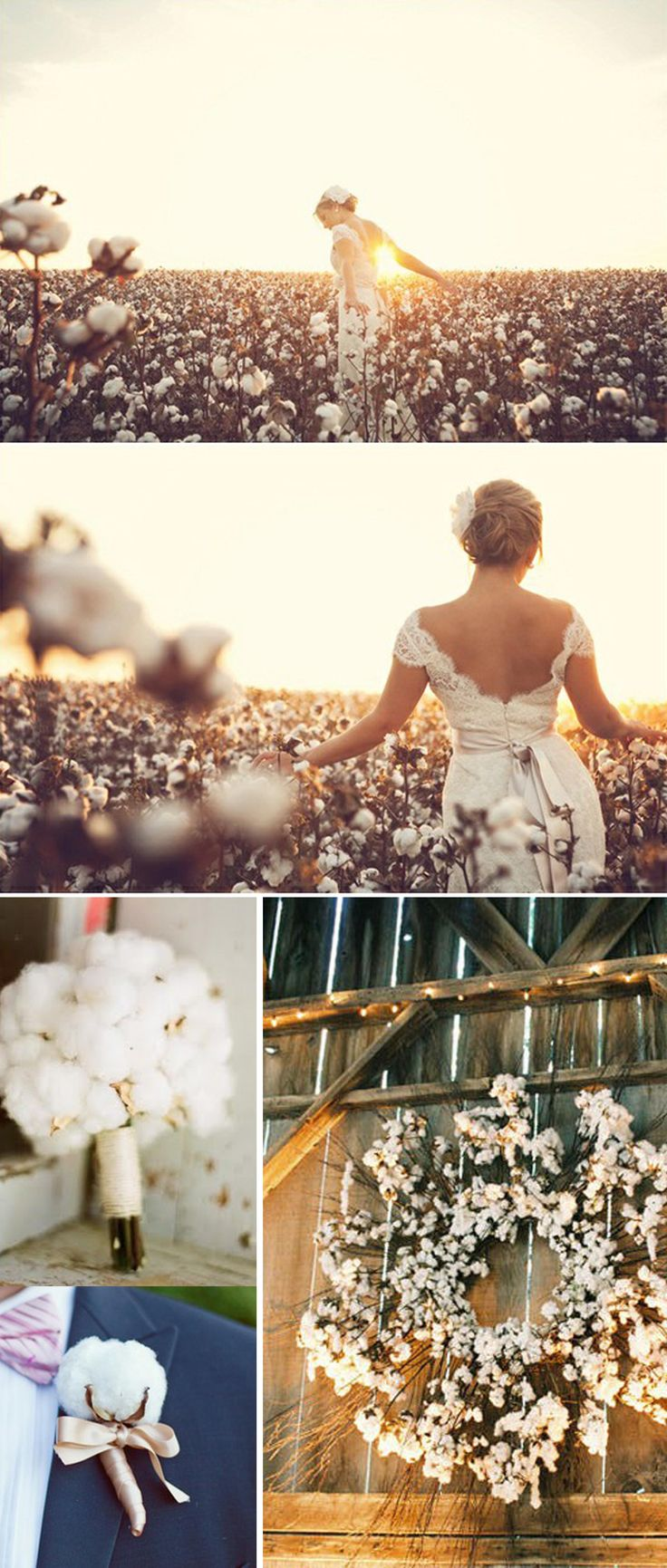 Walkin' In High Cotton ~ We Are Blessed To Be Born And Raised In The South!