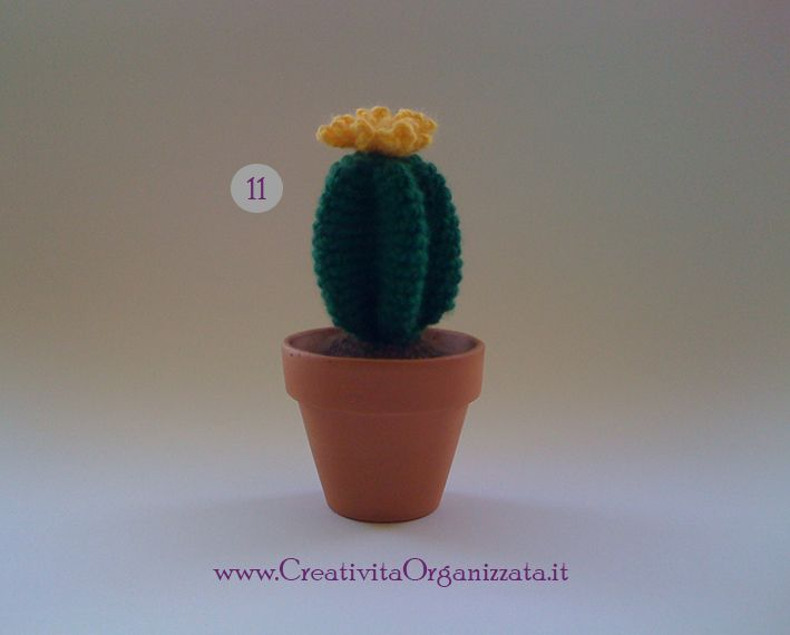 #amigurumi #cactus #pattern #succulente #uncinetto
