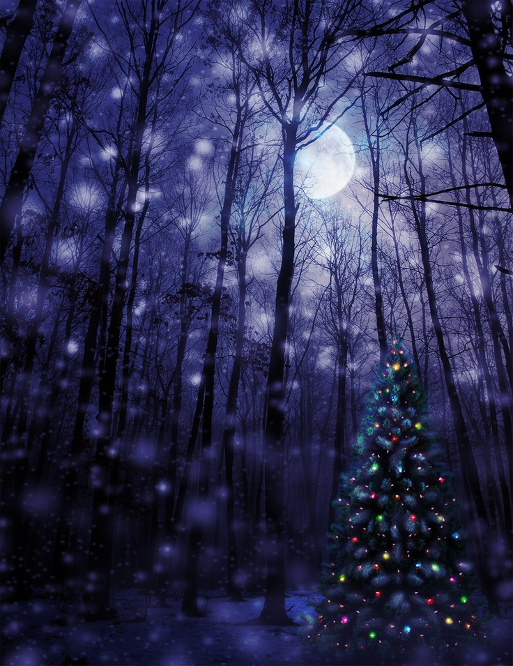 mystical christmas wallpaper - photo #18