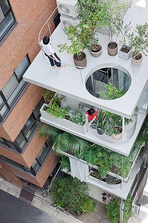 SANAA  garden house