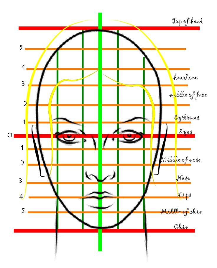 Female Face proportions                                                                                                                                                                                 Más