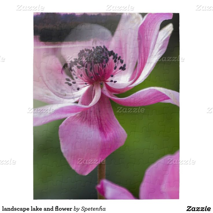 landscape lake and flower jigsaw puzzles