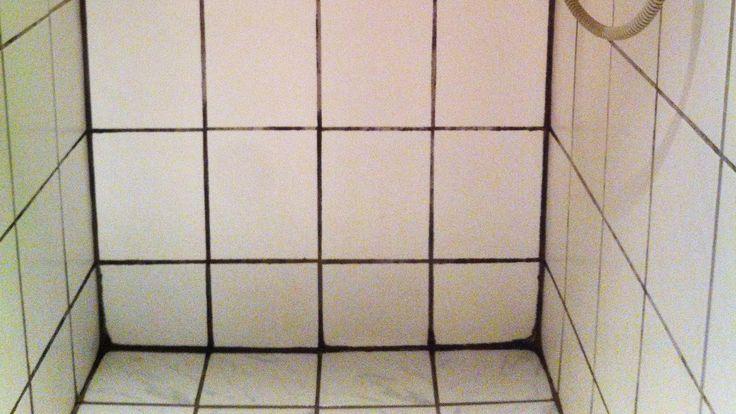 Sorte fuger på badeværelset kommer af skimmelsvamp. Det ser ikke pænt ud, og det er heller ikke godt for indeklimaet eller din sundhed. Samvirke giver dig her et par tips til, hvordan du kan undgå skimmelsvamp, og hvad du skal gøre, hvis skaden er sket.