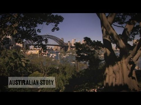 Wendy Whiteley's Lavender Bay garden oasis has become a Sydney icon - YouTube