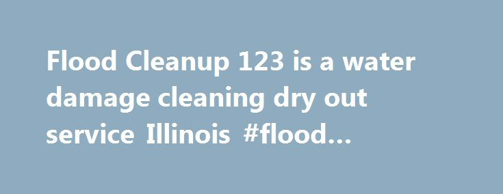 25 Best Ideas About Cleaning Services Chicago On