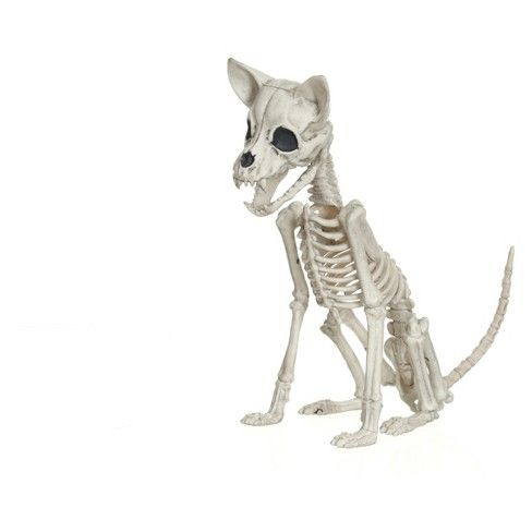 Halloween Chihuahua Skeleton - Hyde and Eek! Boutique™  Target