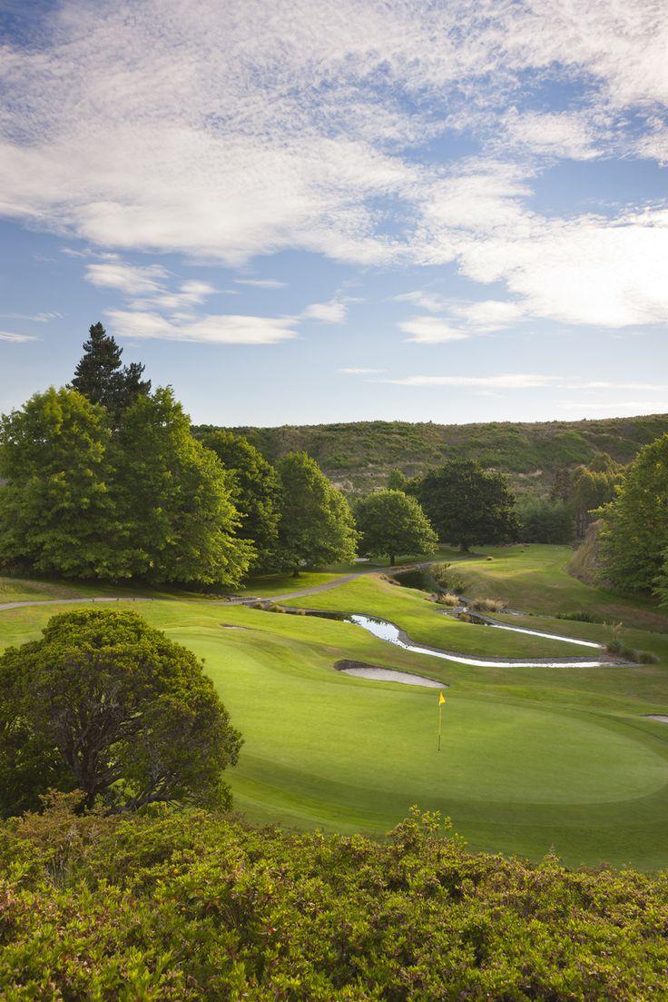 5th green, Wairakei Golf + Sanctuary