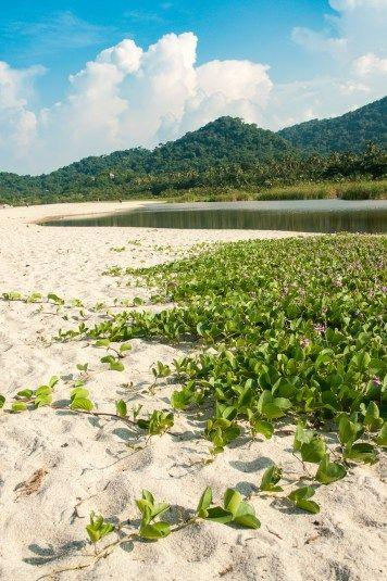 Une des plages du parc national de Tayrona en Colombie.