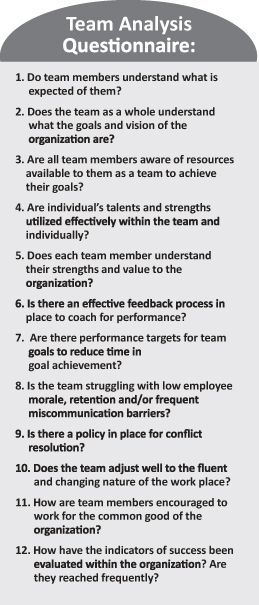 Team Building Questionnaire to reflect on or prepare for the experience
