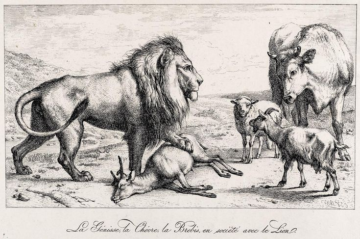 VERBOECKHOVEN, Eugene J. (1798-1881) / Fontaine's Fables -- Lion, with paw on deer, being confronted by cow, lamb, and goat / etching