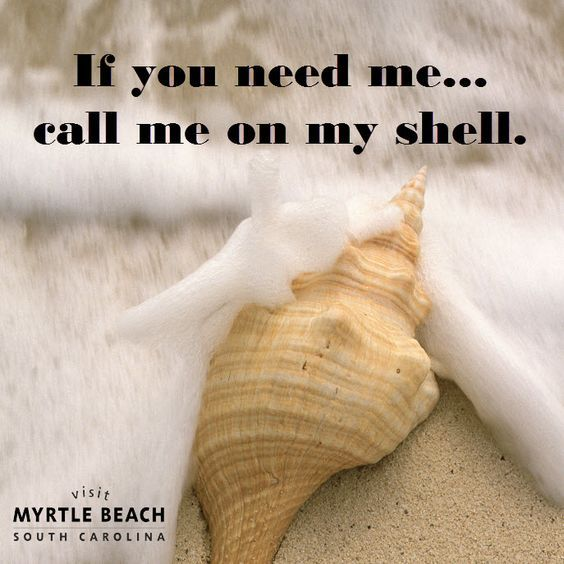 A little beach humor for your Myrtle Beach vacation!