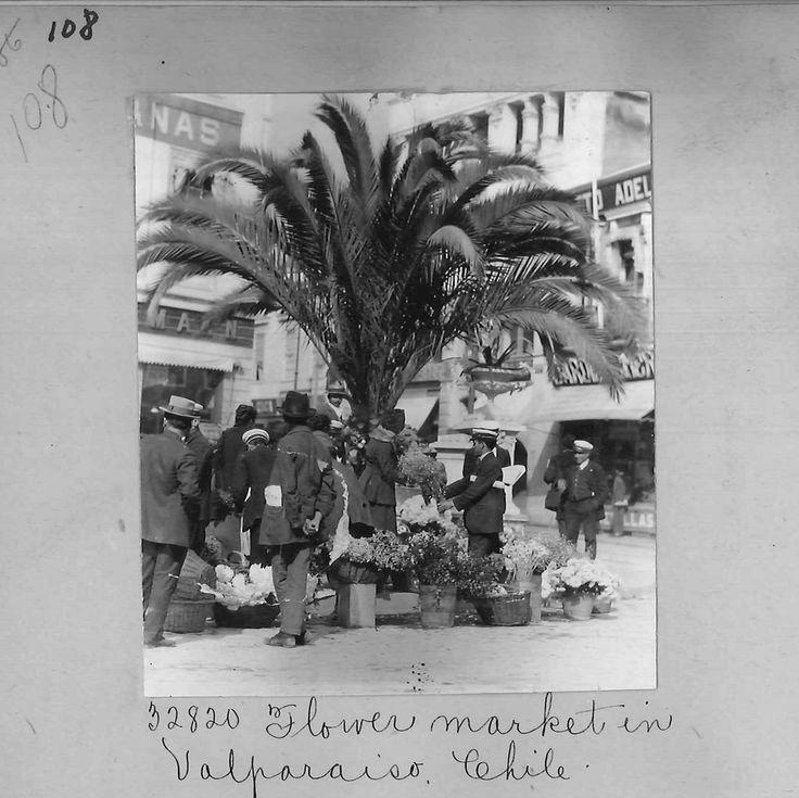 https://flic.kr/p/EsvfaY | plaza anibal pinto de Valparaiso en algun momento fue un mercado de flores