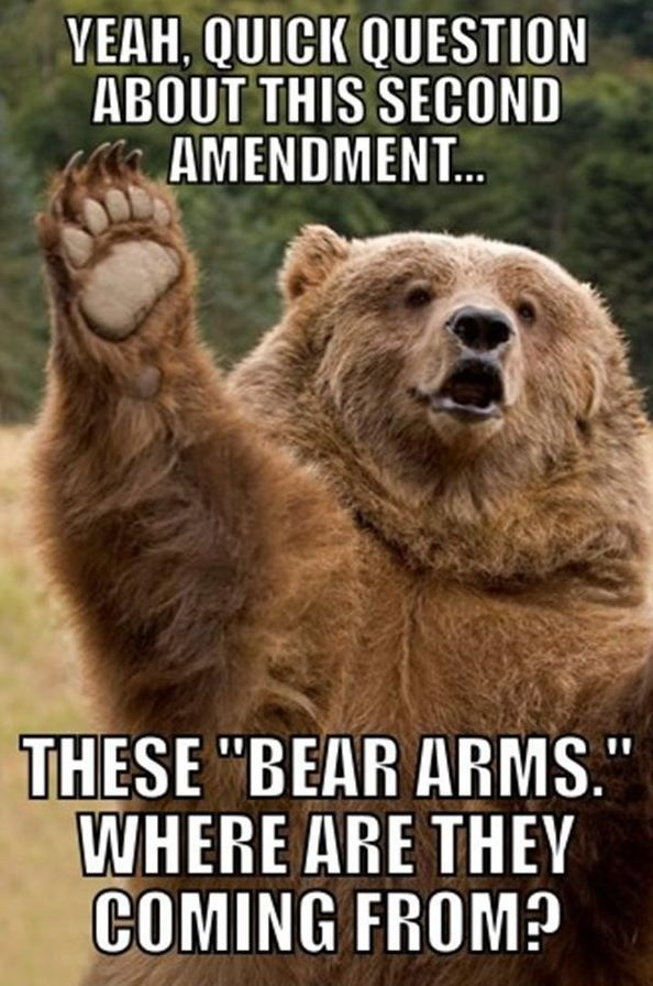 "Cute. Then I thought about it and laughed.... ""You have the right to bear arms"" Bear: Pardon me, but.... Sorry. It is funny."
