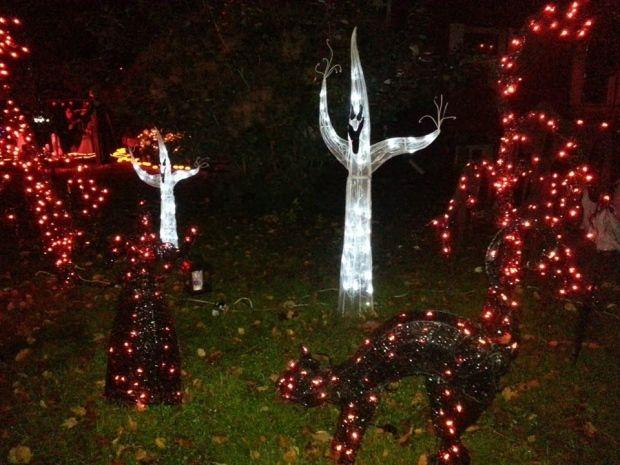 stolen decorations dampen cambridge womans halloween spirit