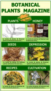 Plant Magazine of Botanical-online