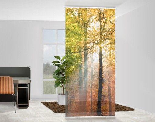 Raumteiler | Vorhang - Morning Light 250x120cm #Schiebegardienen #Schiebevorhang #Vorhang #Raumtrenner #Curtain #Herbst #Wald #Morgensonne #Sonnenschein