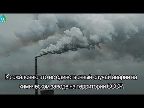 День борьбы за права человека от химической опасности или День химической безопасности - YouTube