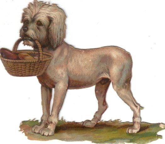 Victorian Die Cut Scrap Maltese Dog Carries Basket c1880: Victorian Die Cut Scrap Maltese Dog Carries Basket c1880