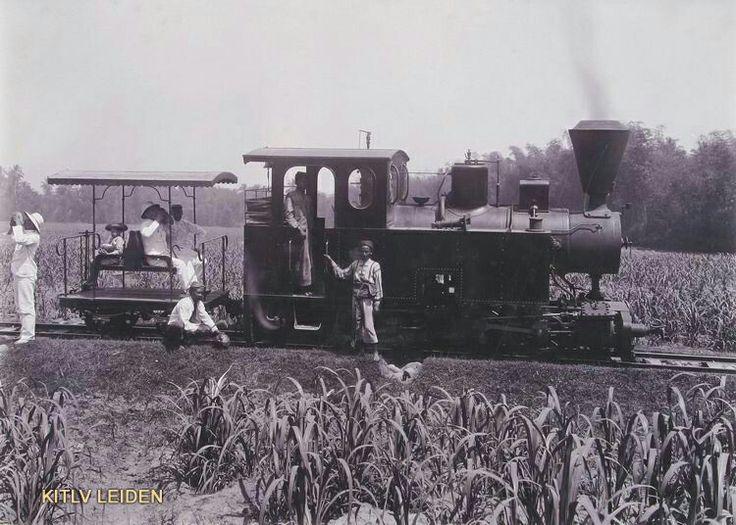 Stoomtreintje op suikeronderneming Ketanen bij Modjokerto. 1860-1940
