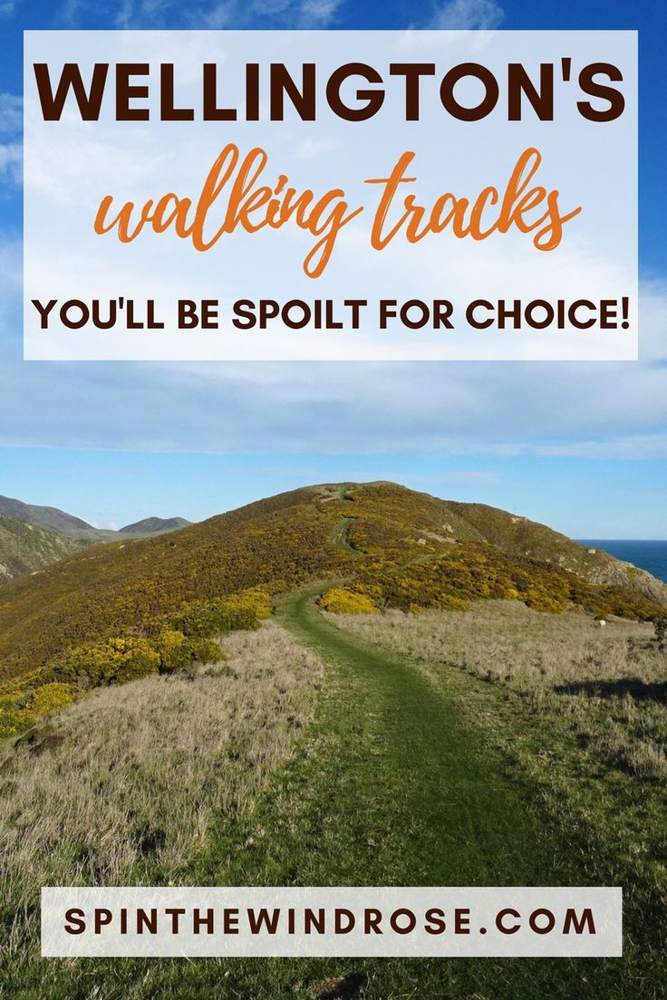 The coolest little capital has everything, but the fun extends into the hills with many great walking tracks in Wellington. Here's my pick of the best! - spinthewindrose.com
